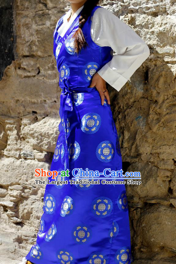 Chinese Traditional Tibetan Royalblue Dress Zang Nationality Heishui Dance Ethnic Costume for Women
