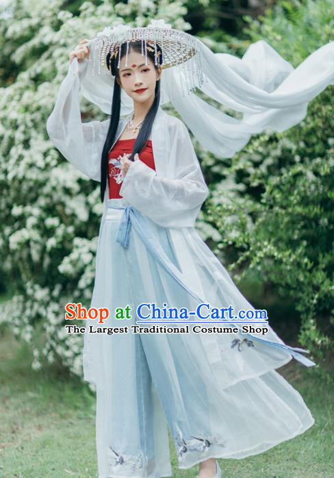 Chinese Traditional Young Lady Embroidered Hanfu Dress Song Dynasty Historical Costume for Women