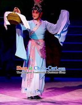 Traditional Chinese Classical Dance Bai Gujing Costume Journey to the West Dance Dress for Women