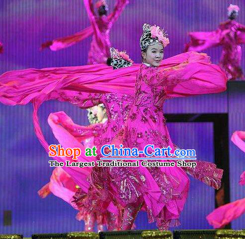 Dance of the Butterfly Traditional Chinese Classical Dance Costume Rosy Water Sleeve Dance Dress for Women