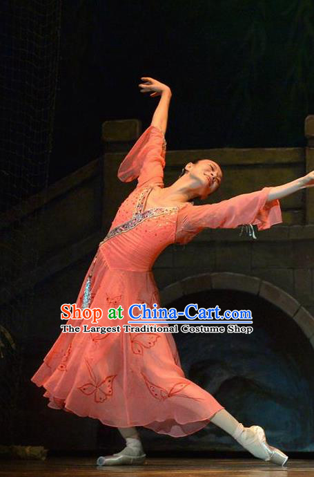 Traditional Chinese Classical Dance Liang Zhu Costume Butterfly Lovers Stage Show Beautiful Dance Pink Dress for Women