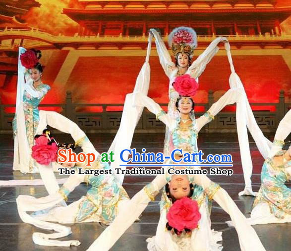 Traditional Chinese Classical Dance Bai Zhu Wu Costume Tang Dynasty Court Water Sleeve Dance Dress for Women