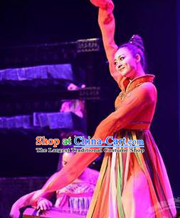 Traditional Chinese Classical Dance Rui Zhe Gu Costume Water Sleeve Stage Show Beautiful Dance Dress for Women