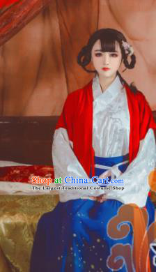 Chinese Traditional Cosplay Maidservants Dress Custom Ancient Swordswoman Costume for Women