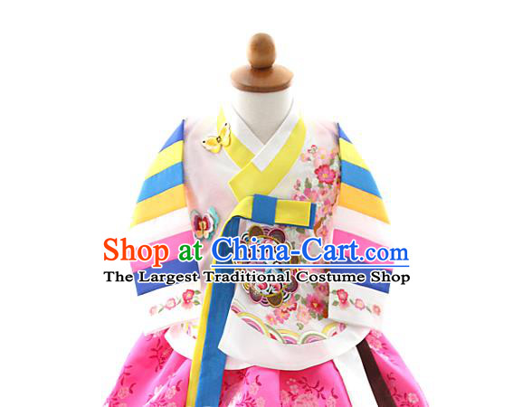 Asian Korea Girls Embroidered Blouse and Pink Dress Korean Kids Fashion Traditional Apparels Hanbok Birthday Costumes