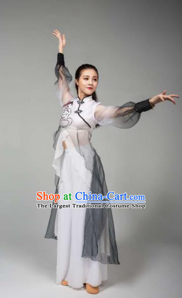 China Women Single Dance Outfits Traditional Classical Dance Costume Drama Stage Performance Clothing