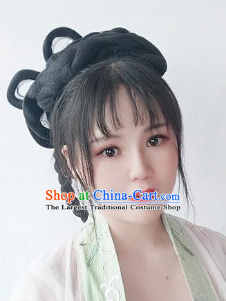 Chinese Song Dynasty Noble Lady Wigs Best Quality Wigs China Cosplay Wig Chignon Ancient Royal Princess Wig Sheath