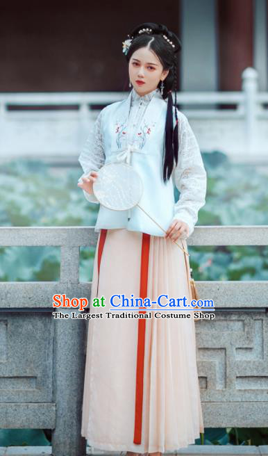Chinese Ancient Noble Lady Embroidered Dress Traditional Ming Dynasty Nobility Costumes for Women