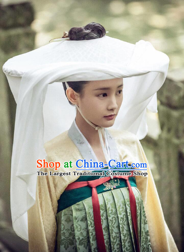 Traditional Chinese Ancient Nobility Lady Dress Drama Royal Nirvana Song Dynasty Costumes and Hat for Women