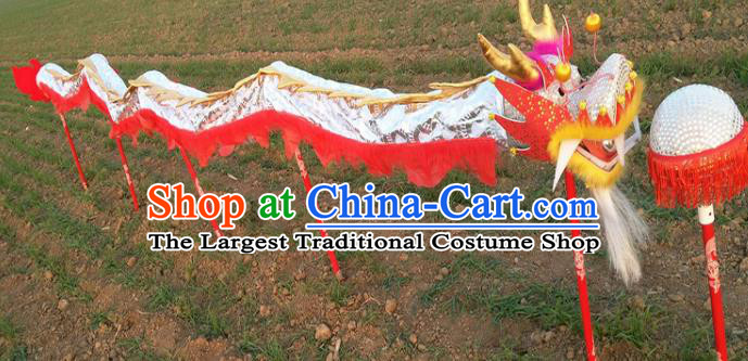 Chinese Traditional White Dragon Head Prop Dragon Dance Competition Costumes for Kids