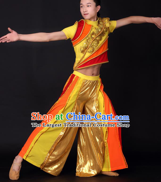 Chinese Traditional Male Dance Golden Clothing China Folk Dance Stage Performance Costume for Men