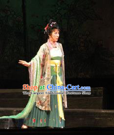 Traditional Chinese Peking Opera Hua Tan Dress Apparel Li Qingzhao Costumes Garment and Headwear
