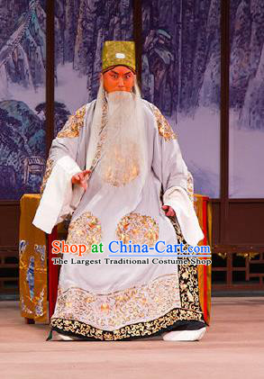 Chinese Beijing Opera Chancellor Garment Peking Opera Judge Bao and the Qin Xianglian Case Apparels Elderly Male Han Qi Costumes and Headwear
