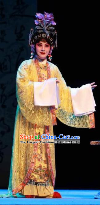 Traditional Chinese Peking Opera Empress Apparels Garment The Revenge of Prince Zi Dan Hua Tan Queen Dress Costumes and Headdress