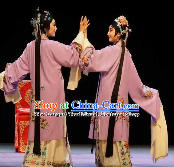 Chinese Kun Opera Apparels Costumes The Fragrant Companion Peking Opera Hua Tan Garment Dress and Hair Ornaments