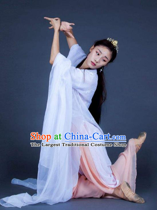 Chinese Traditional Dance Unsillied White Dress Classical Dance Stage Performance Costume for Women