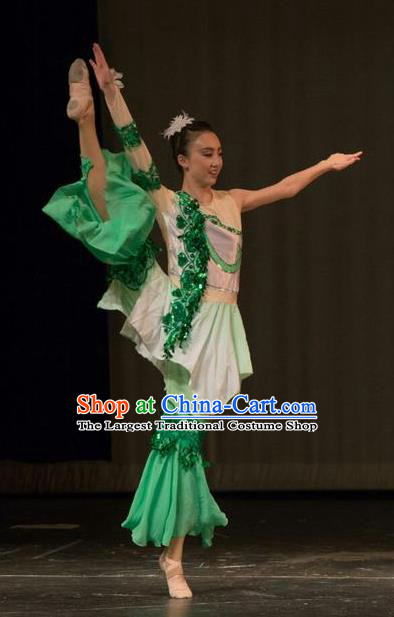 Chinese Traditional Folk Dance Liu Yue Mo Li Green Dress Classical Dance Stage Performance Costume for Women