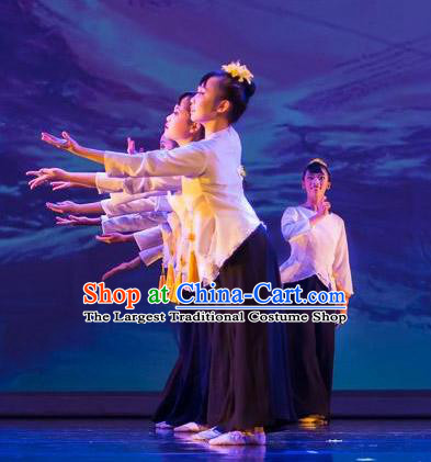 Chinese Traditional Folk Dance Liu Yue Mo Li Outfits Classical Dance Stage Performance Costume for Women
