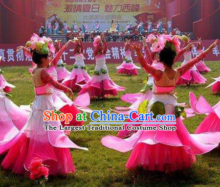 Chinese Lotus Dance Pink Dress Traditional Classical Dance Stage Performance Costume for Women