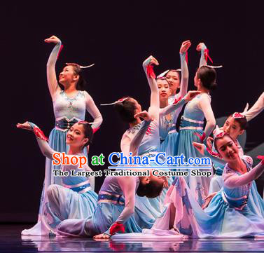 Chinese Swan Folk Dance Blue Dress Traditional Classical Dance Stage Performance Costume for Women