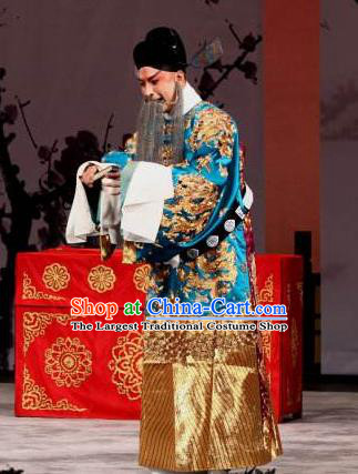 Chinese Beijing Opera Elderly Male Apparels Zhu Lian Zhai Peking Opera Garment Costumes Official Python Embroidered Robe and Hat