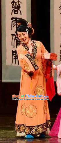Chinese Shaoxing Opera Procuress Chen Sanliang Dress Apparels Costumes and Headpieces Yue Opera Madam Garment