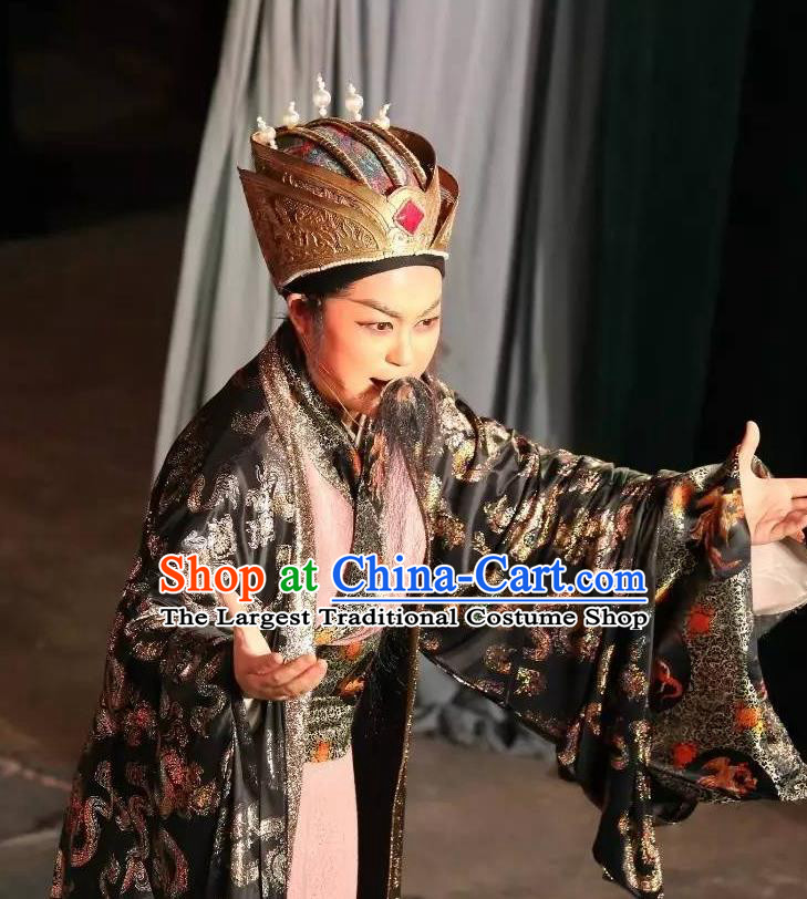 Chinese Yue Opera Laosheng Baihua River Elderly Male Ling Bing Costumes and Headwear Shaoxing Opera Official Garment Apparels
