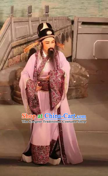 Chinese Yue Opera Ministry Councillor Baihua River Apparels Ling Bing Costumes and Headwear Shaoxing Opera Laosheng Elderly Male Garment