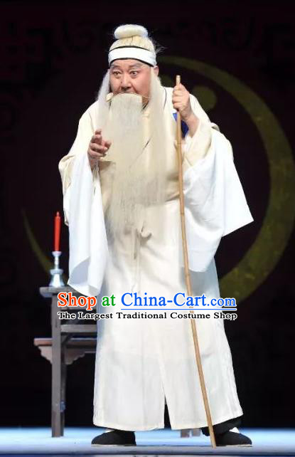 Chinese Classical Kun Opera Old Men Apparels The Story of Pipa Peking Opera Garment Elderly Male Costumes and Headwear