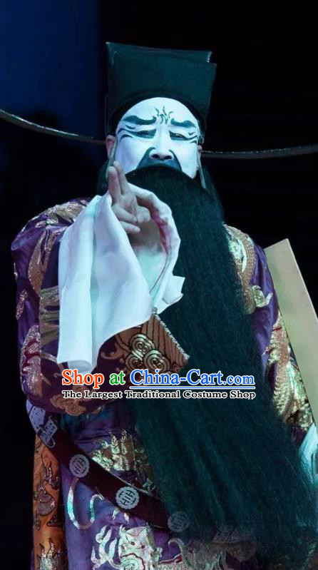 Chinese Classical Kun Opera Chancellor Official Costumes The Palace of Eternal Youth Apparels Peking Opera Old Man Garment Embroidered Robe and Hat