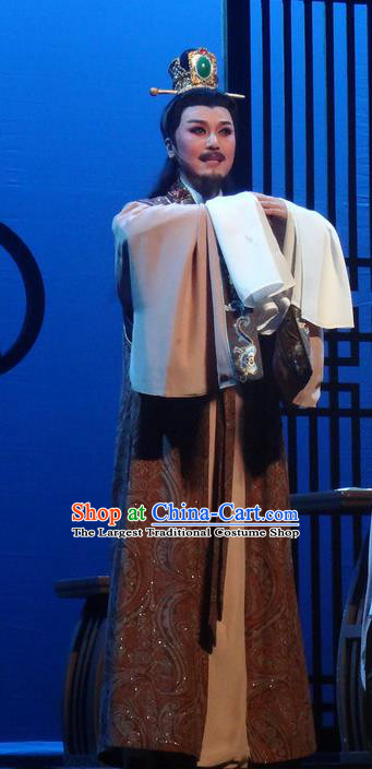 Chinese Shaoxing Opera Scholar Garment Yue Opera Shuang Fei Yi Male Apparels Costumes and Hair Accessories