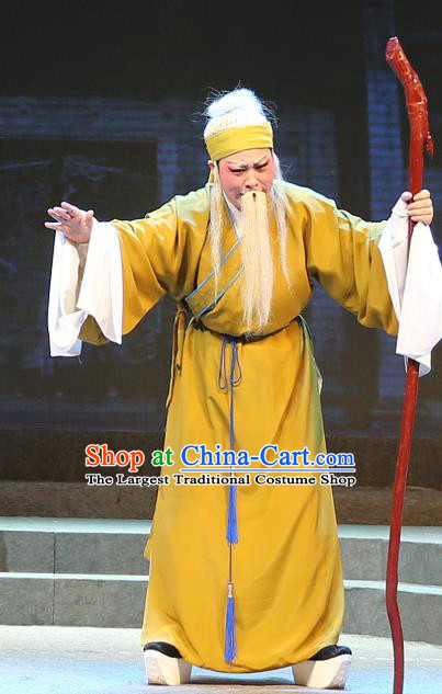 Chinese Yue Opera Old Male Qing Jian Fan Ying Apparels and Headwear Shaoxing Opera Laosheng Elderly Man Costumes Garment