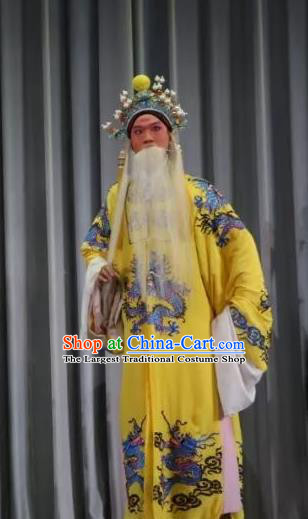 Bai Sui Gua Shuai Chinese Yue Opera Laosheng Apparels and Headwear Shaoxing Opera Elderly Male Garment Emperor Costumes