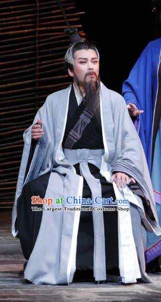 The Orphan of Zhao Chinese Yue Opera Minister Cheng Ying Garment Costumes and Headwear Shaoxing Opera Elderly Male Apparels