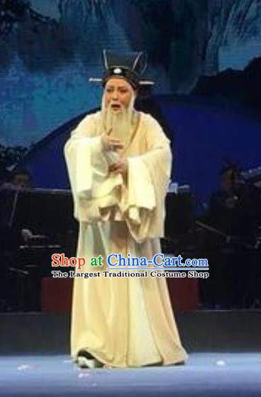 The Orphan of Zhao Chinese Yue Opera Elderly Male Garment Costumes and Headwear Shaoxing Opera Minister Gongsun Chujiu Apparels