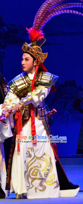 Mrs Dayi Chinese Yue Opera Wusheng General Garment Costumes and Headwear Shaoxing Opera Martial Male Takefu Armor Apparels