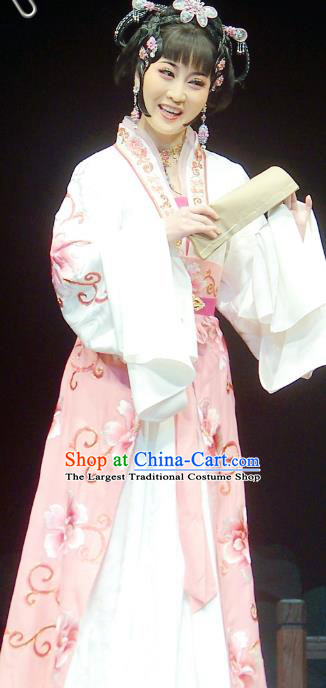 Chinese Shaoxing Opera Young Female Apparels Costumes and Headpieces Chuan Qi Lang Zi Yue Opera Xiao Dan Dress Garment