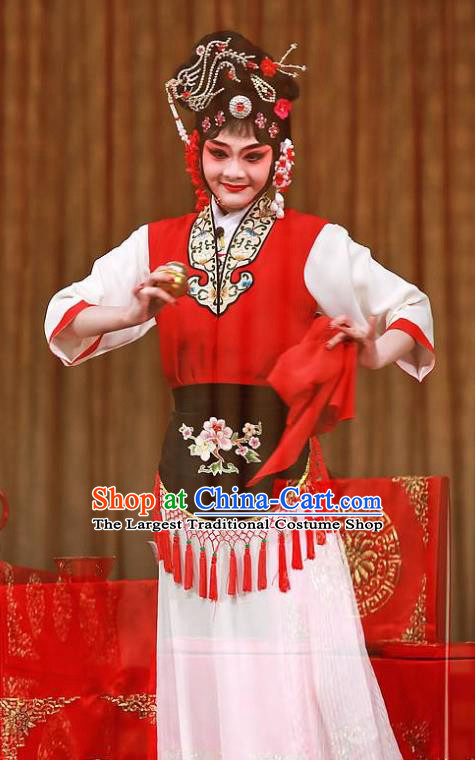 Chinese Kun Opera Hua Tan Pan Jinlian Costumes Apparels and Headpieces Heros Kunqu Opera Country Woman Dress Garment