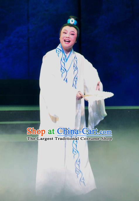 Chinese Yue Opera Young Male Garment and Headwear Shaoxing Opera Xiaosheng Scholar Zhang Lun Robe Costumes