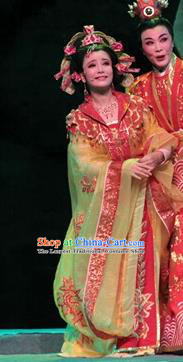 Chinese Shaoxing Opera Royal Princess Rong Hua Dream Dress Apparels Costumes and Headpieces Yue Opera Actress Garment