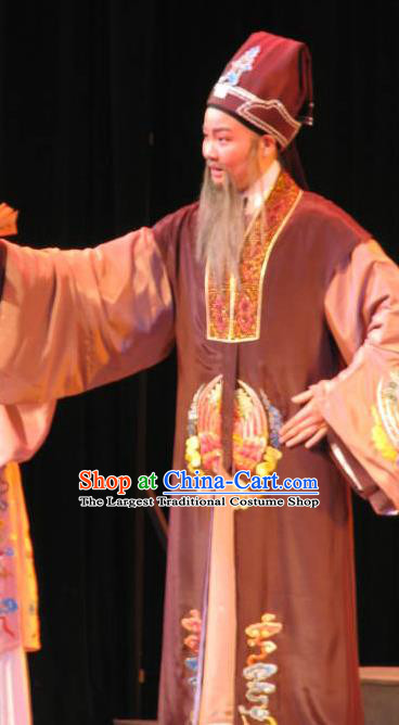 Three Charming Smiles Chinese Yue Opera Laosheng Garment Clothing and Headwear Shaoxing Opera Elderly Male Imperial Tutor Hua Apparels Costumes