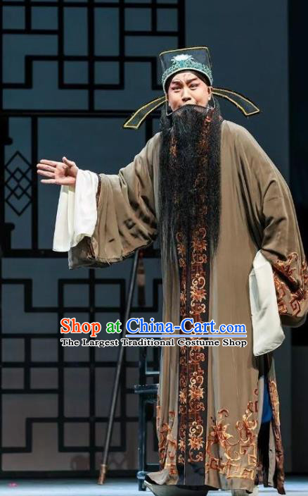 Chinese Kun Opera Elderly Male Jia Zheng Apparels and Headwear Dream of Red Mansions Garment Costumes Kunqu Opera Laosheng Landlord Clothing