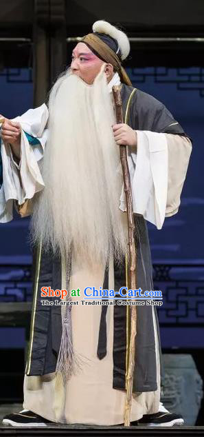 the Legend of Washing the Silk Gauze Chinese Kun Opera Elderly Male Apparels Garment Costumes and Headwear Kunqu Opera Old Man Clothing