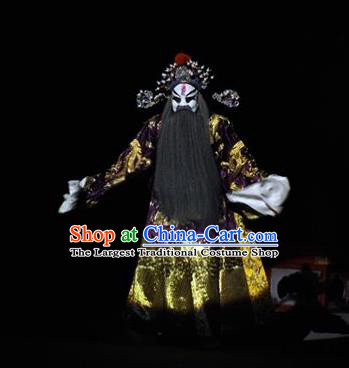 The Tale of Handan Chinese Kun Opera Laosheng Apparels and Headwear Kunqu Opera Garment Costumes Prime Minister Embroidered Robe