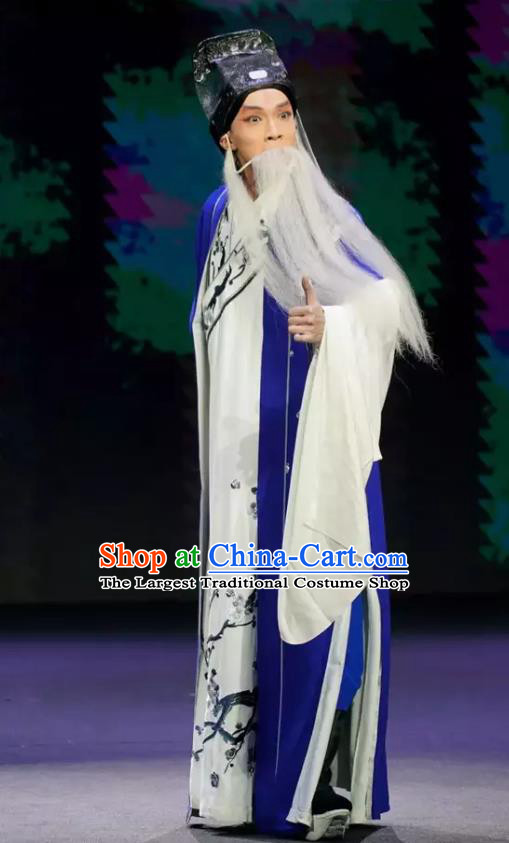 Gu Yanwu Chinese Old Man Apparels and Headwear Kunqu Opera Laosheng Garment Elderly Male Costumes