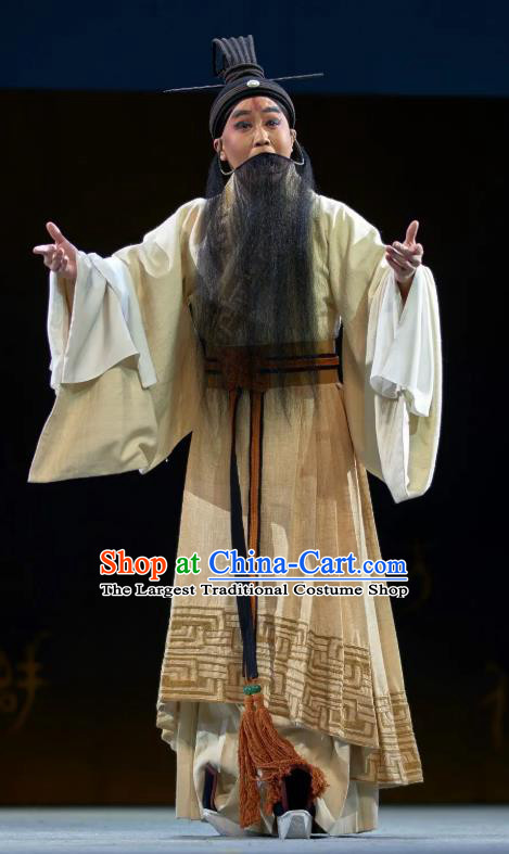 Confucius Chinese Kun Opera Laosheng Apparels and Headwear Kunqu Opera Elderly Male Garment Ideologist Costumes