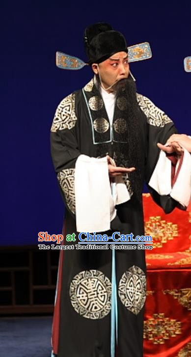 Feng Zheng Wu Chinese Kun Opera Laosheng Apparels Costumes and Headwear Kunqu Opera Elderly Male Qi Buchen Garment Clothing