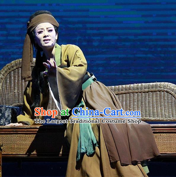 Chinese Huangmei Opera Elderly Woman Costumes Apparels and Headpieces Chuan Deng Traditional Anhui Opera Laodan Dress Garment