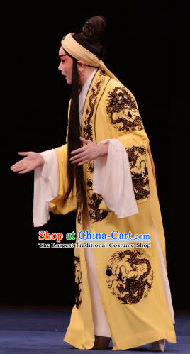 The Prophetic Paintings Chinese Kun Opera Xiaosheng Apparels Costumes and Headwear Kunqu Opera Garment Young Male Yellow Clothing