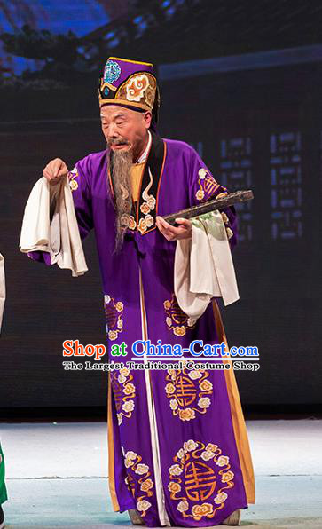 Chinese Huangmei Opera Elderly Man Garment Goddess Marriage Costumes and Headwear An Hui Opera Landlord Fu Apparels Clothing
